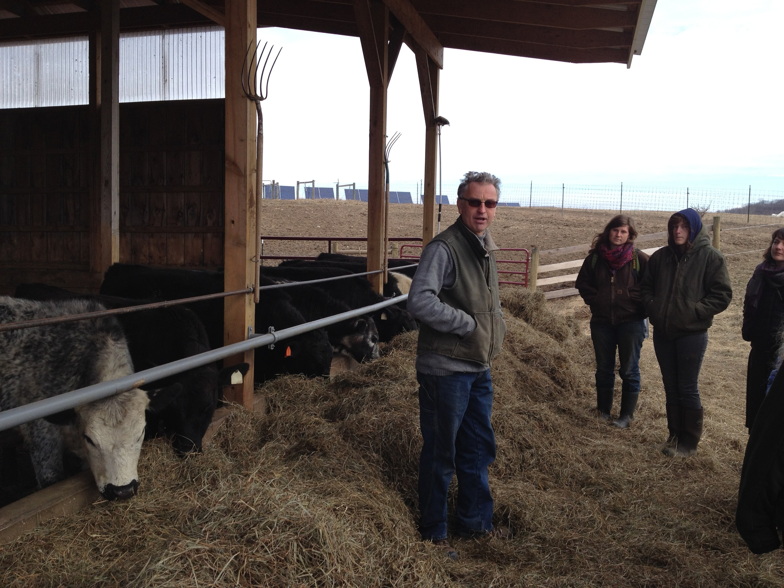 Jean-Paul Courtens chats with us about how cows improve the soil fertility at Roxbury Farm.