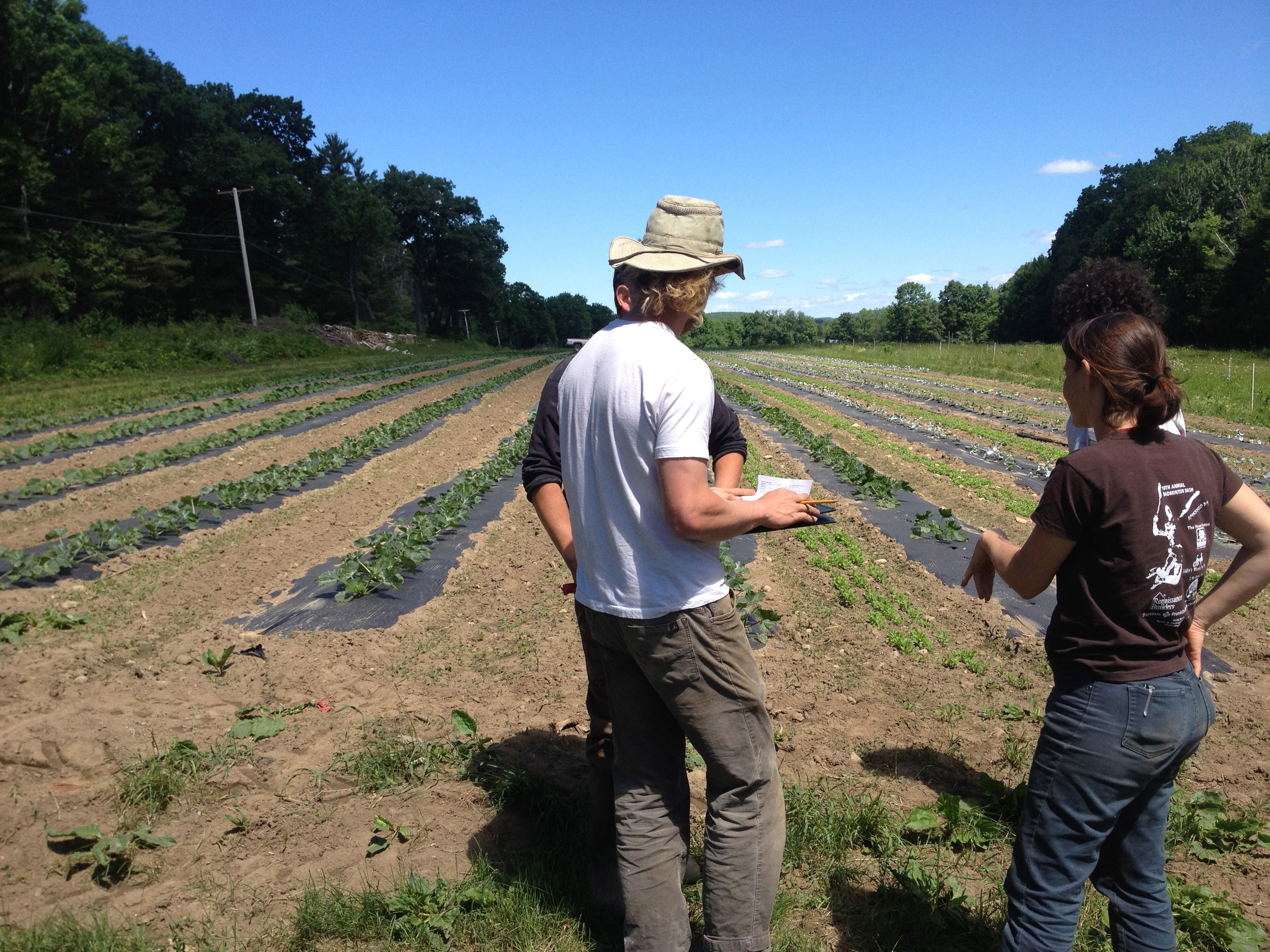 Investigating our growing pest and disease issues with Katie, an expert from the UMass Ag Extension Agency.