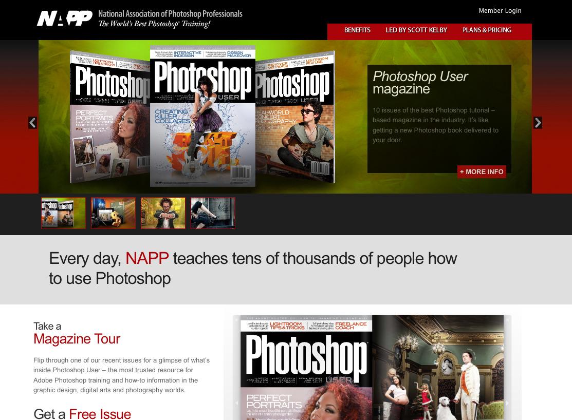 napp_website.jpg