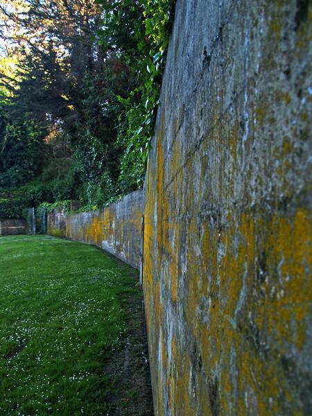 Yellowed Wall