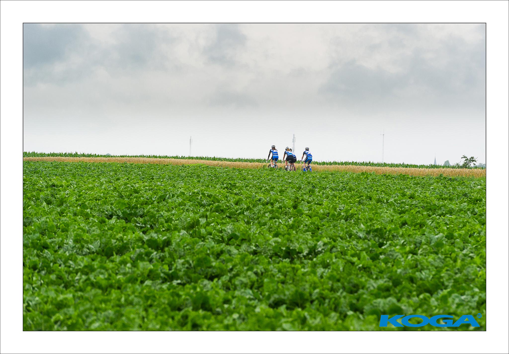 KOGA team through the farmfields