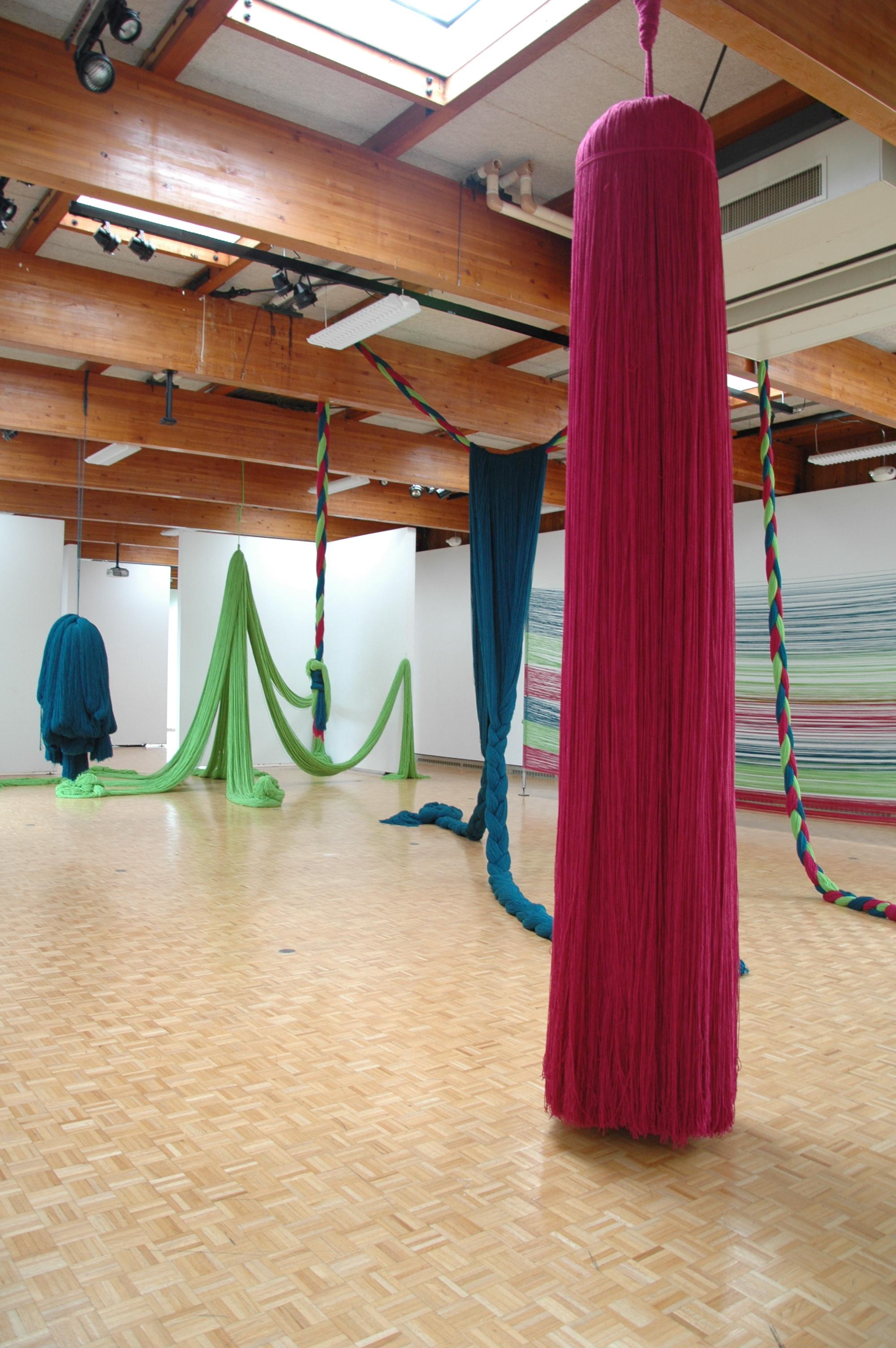 A Work in Progress: TRIM (Installation at Usdan Gallery, Bennington College), 2010, Acrylic yarn, 14' x 40' x 80' (Installation with video)