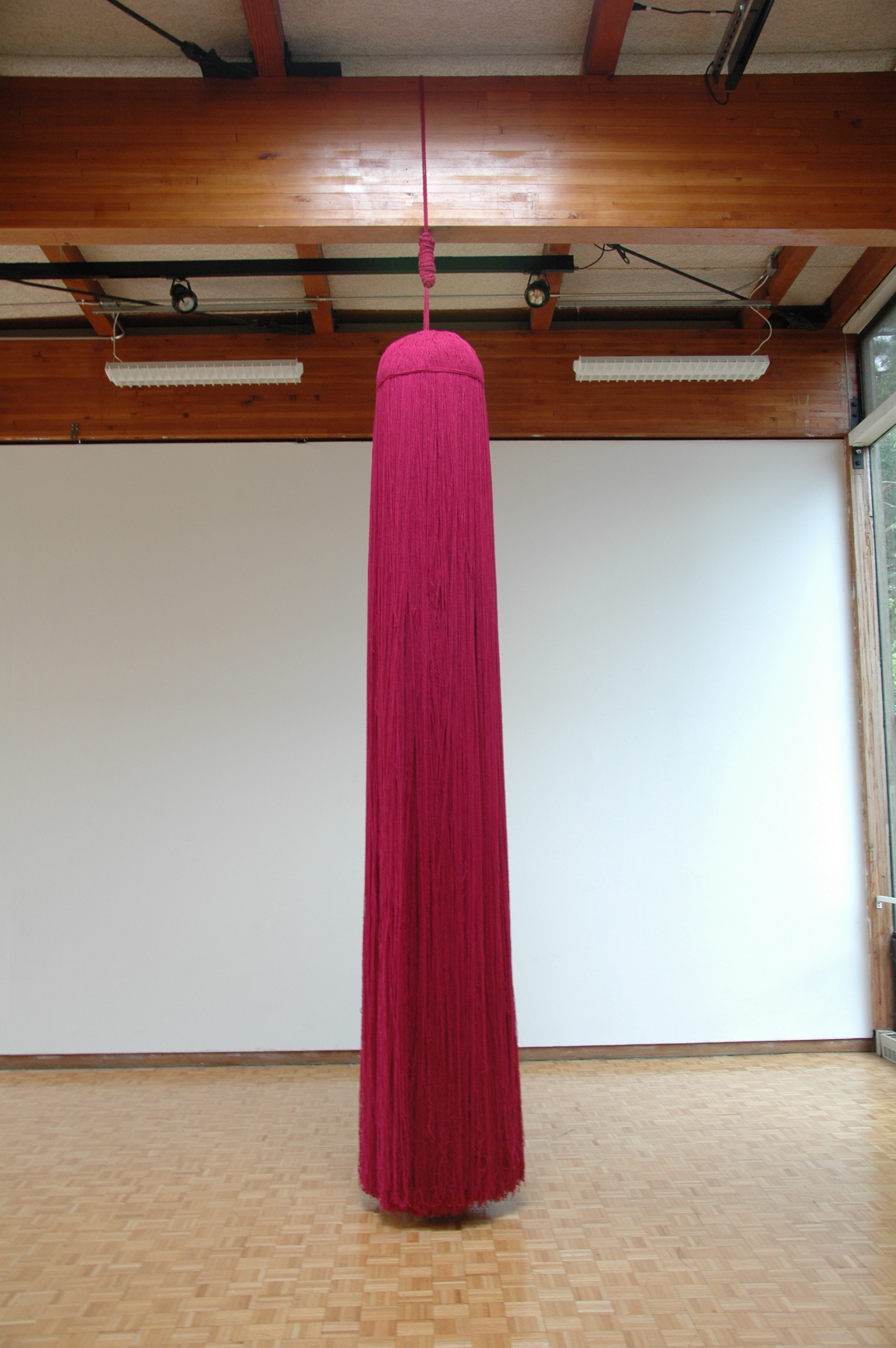 A Work in Progress: TRIM (Installation at Usdan Gallery, Bennington College), 2010, Acrylic yarn, 14' x 40' x 80' (Tassel detail)