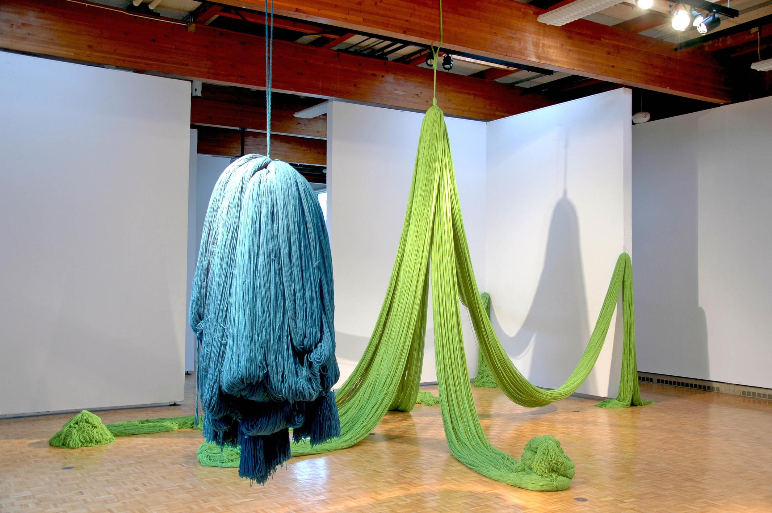 A Work in Progress: TRIM (Installation at Usdan Gallery, Bennington College), 2010, Acrylic yarn 14' x 40' x 80' (Installation detail)