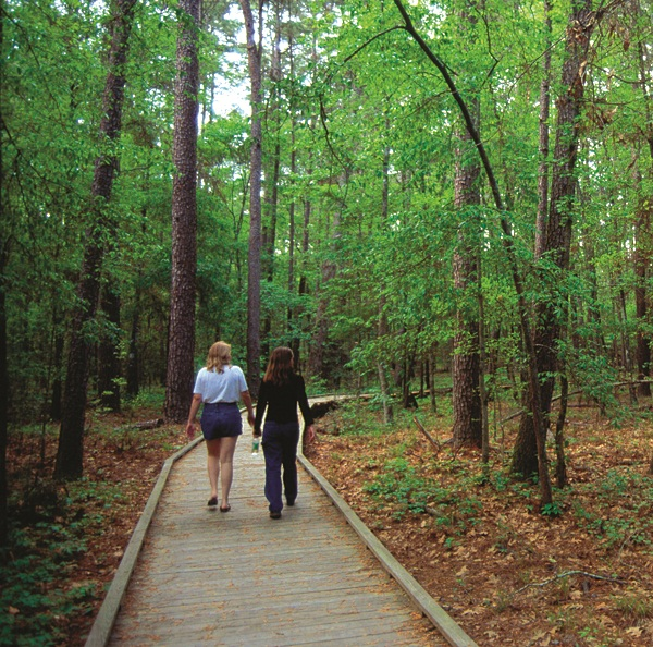 Piney Woods_Kathy Adams Clark_walkers_disc 2_37383_8bt.jpg