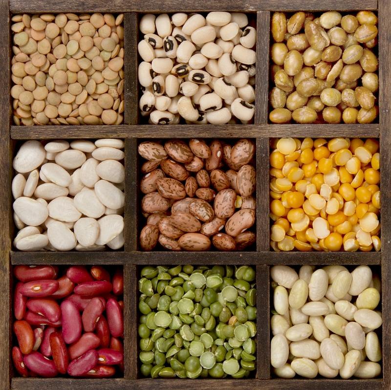 Beans-Legumes.jpg