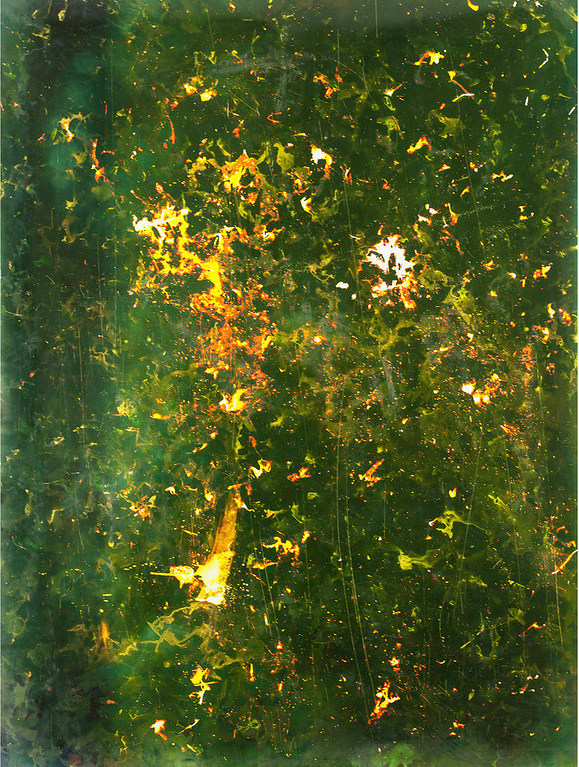 Burning Leaves II