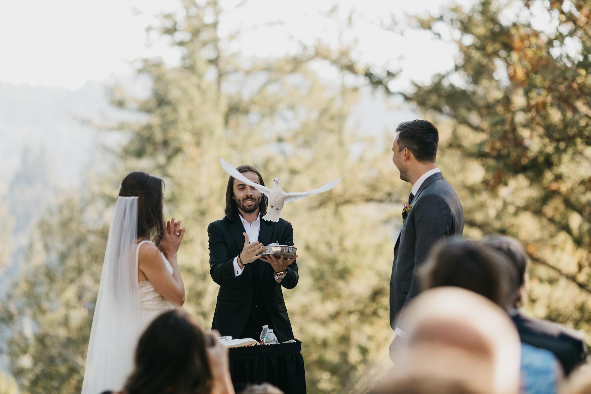 anvil-vineyards-wedding-photographer444.jpg