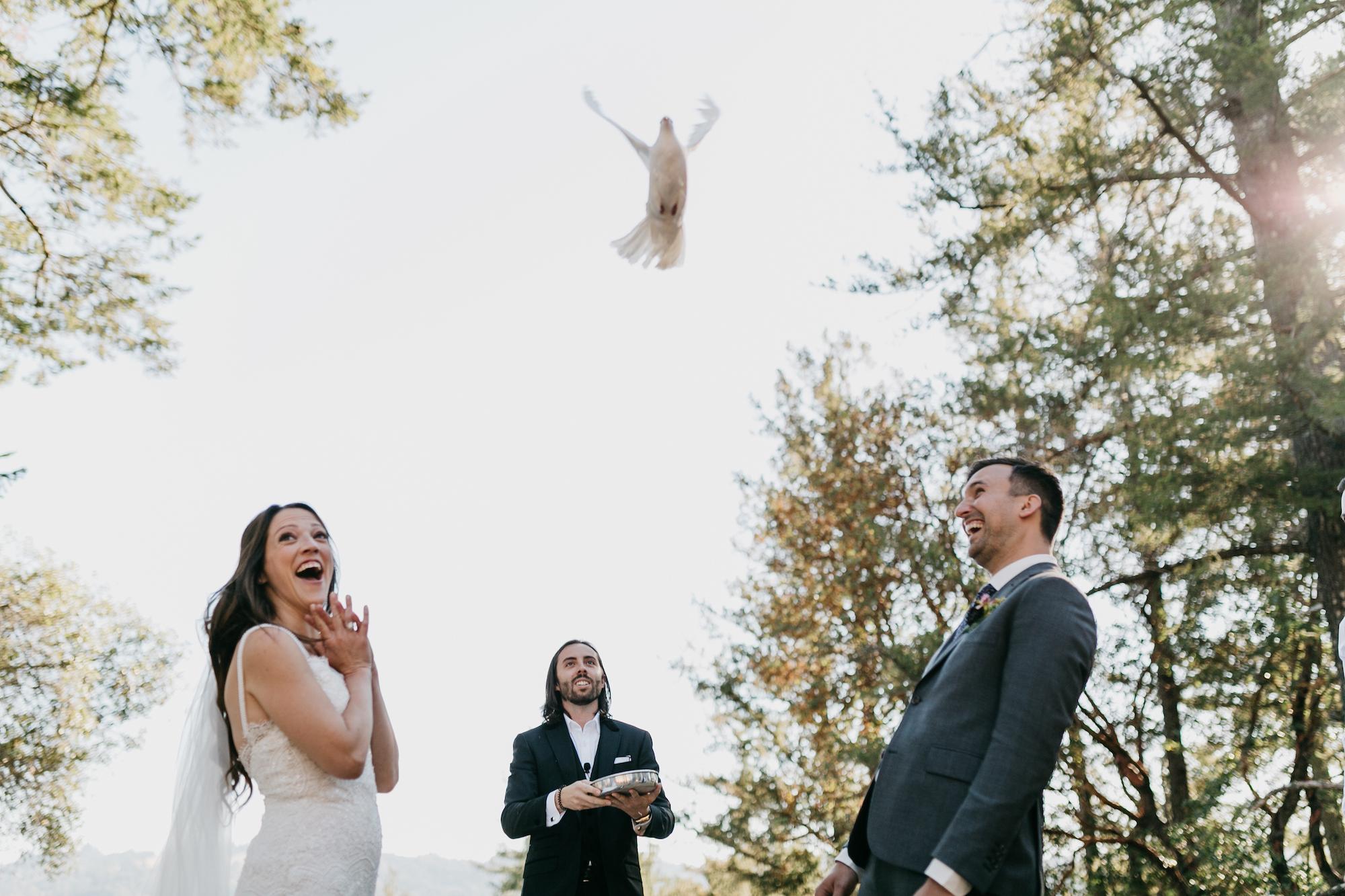 anvil-vineyards-wedding-photographer446.jpg