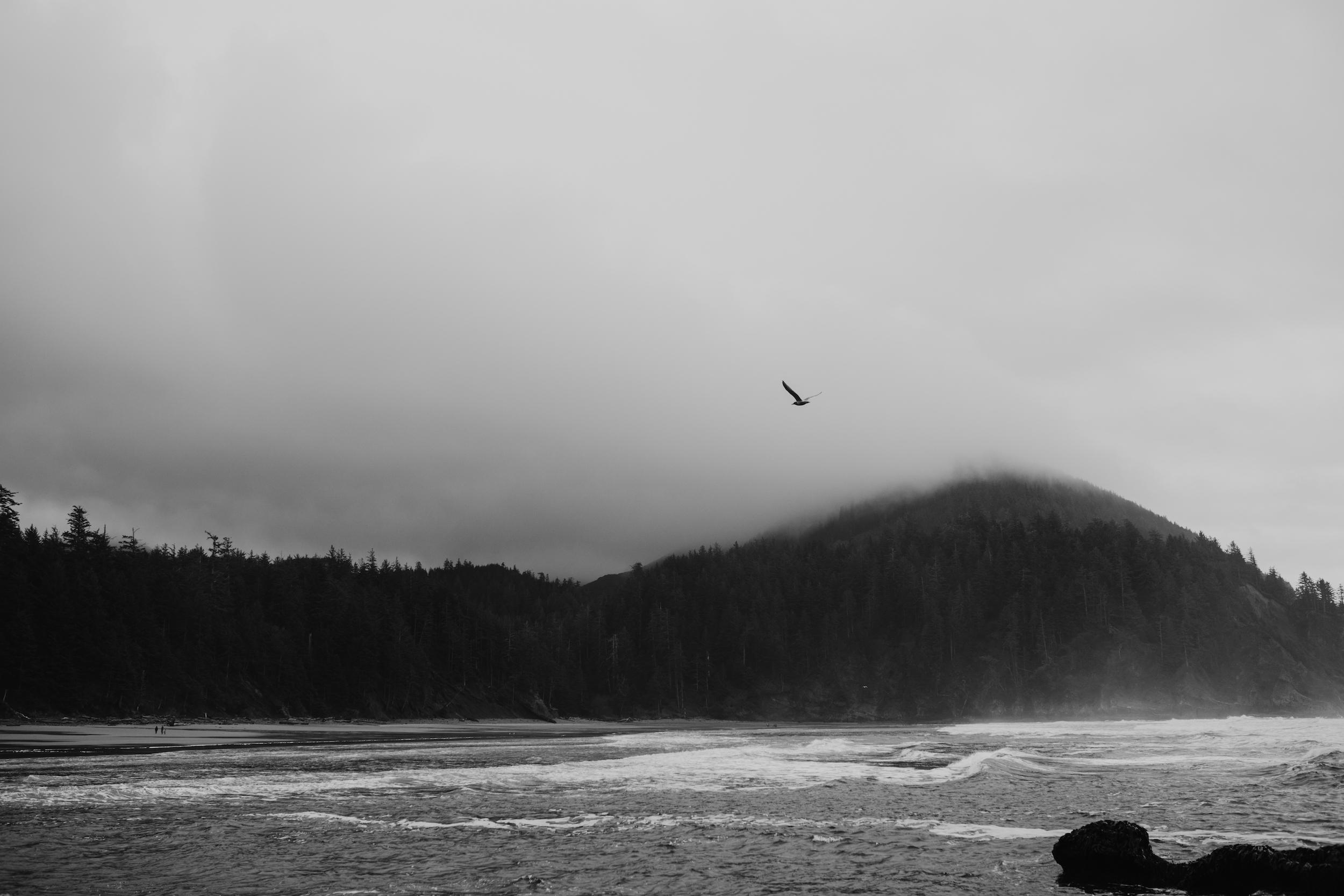 oswald-state-park-oregon-coast-engagement-photographer132.jpg