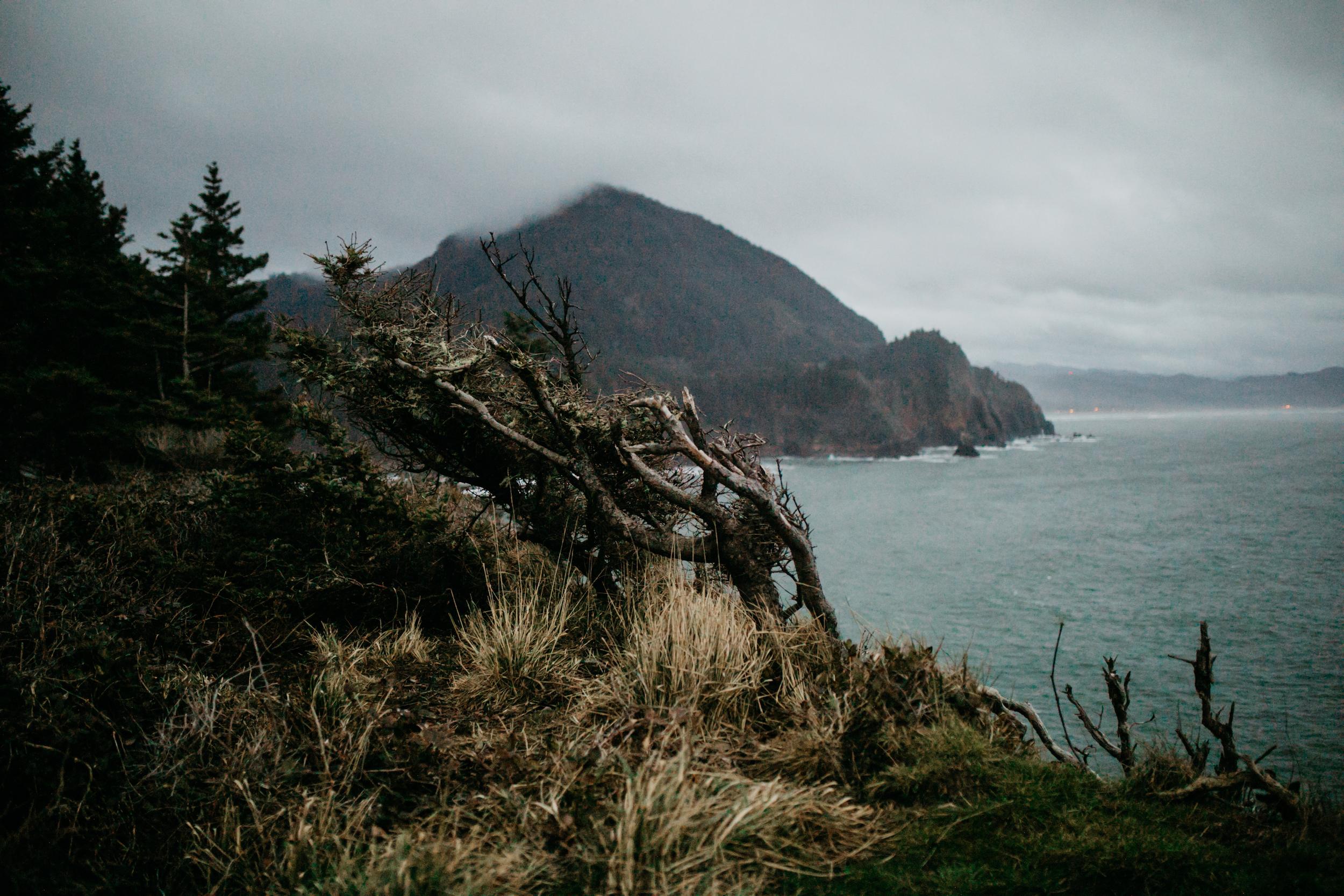 oswald-state-park-oregon-coast-engagement-photographer240.jpg