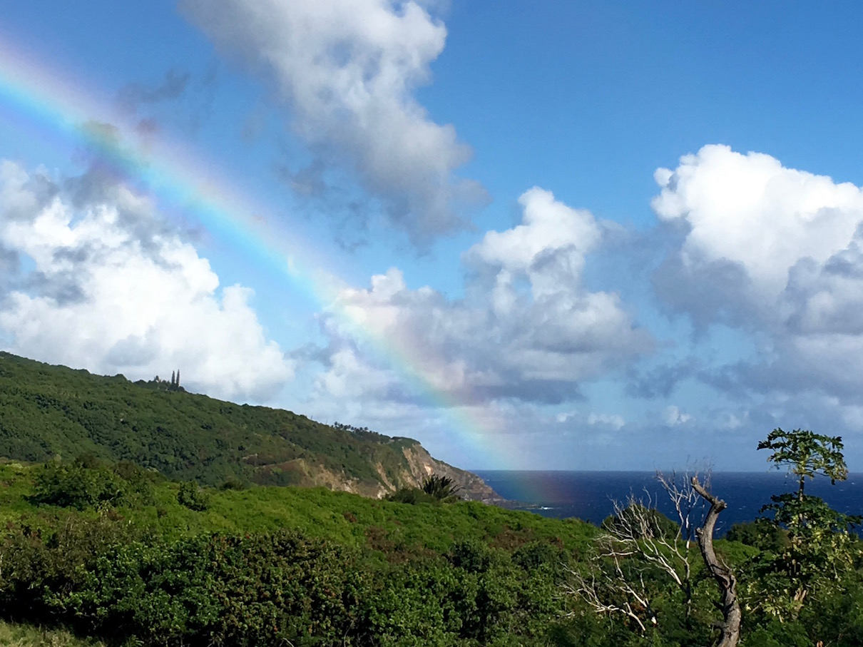 This rainbow is from the Southern tip of Maui where one of the driest places on Earth meets one of the wettest! Here's the stunning desert part— Kaupo...