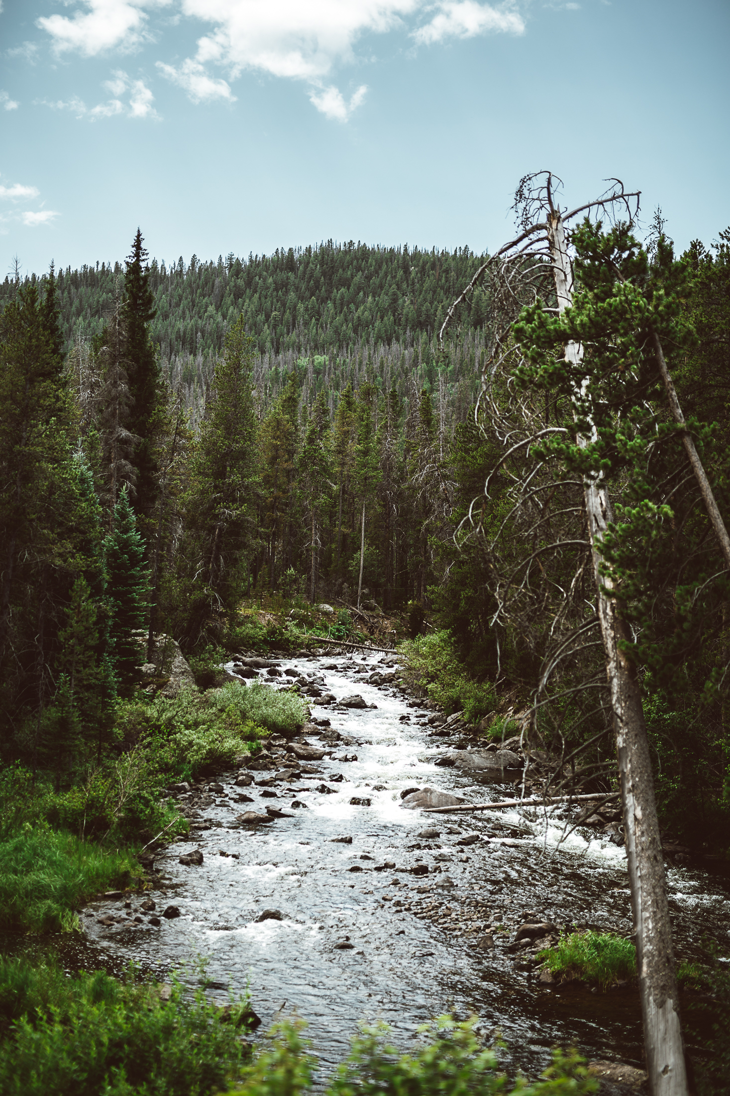 Jimmy_Bowron_adventure_photography_colorado_ (1 of 23).jpg