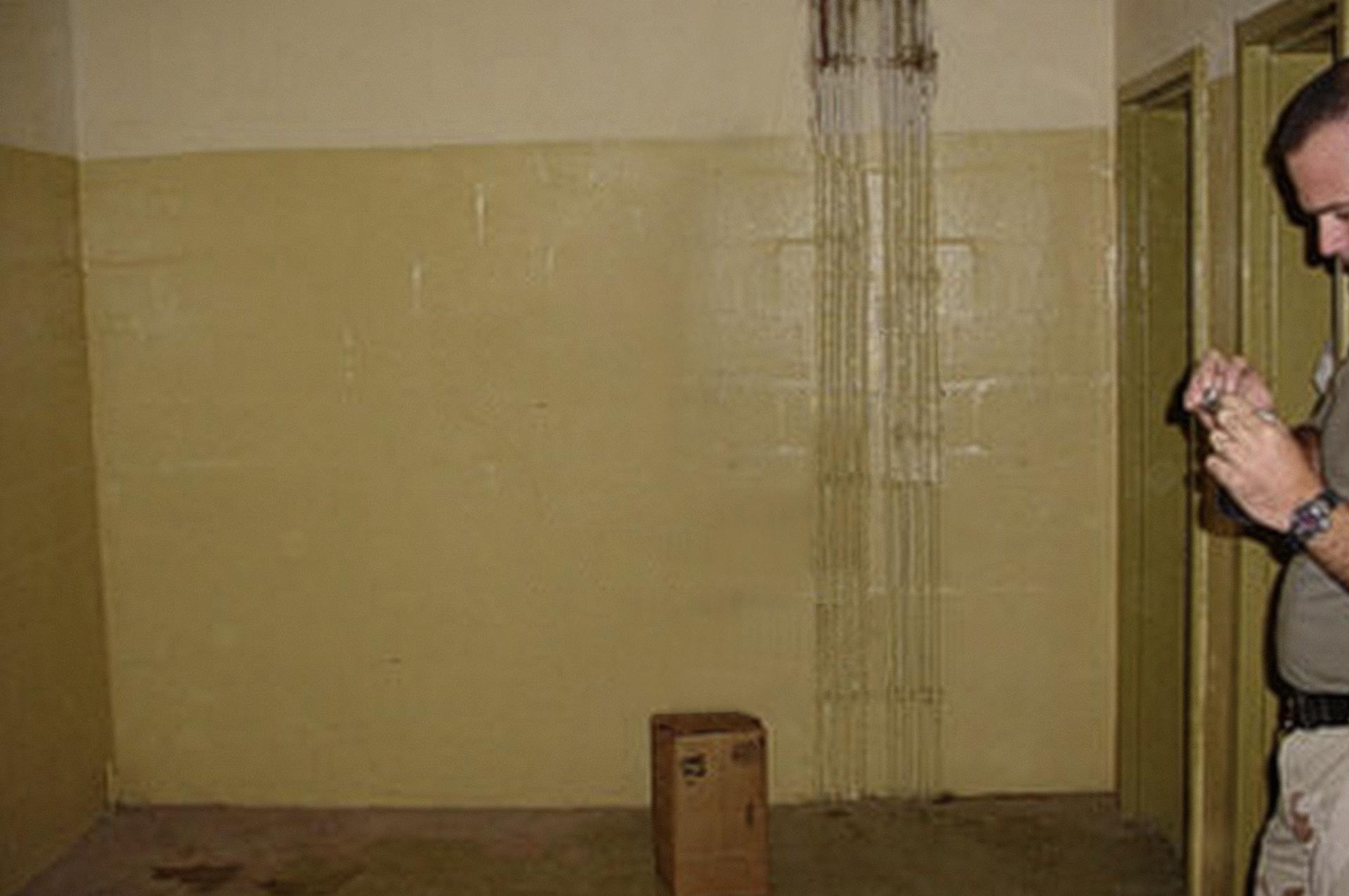 Untitled #13 (AHSF), 2006
