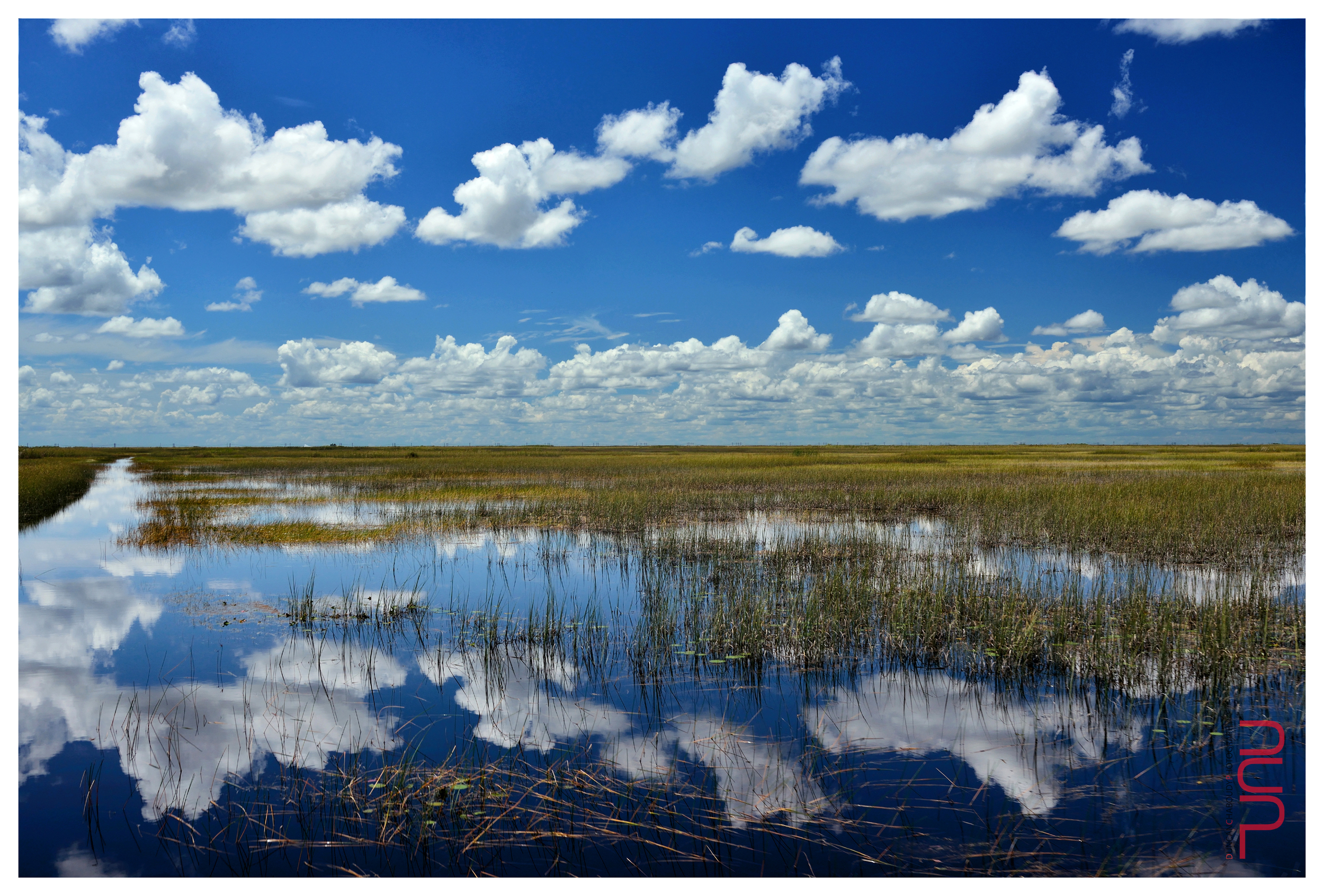 Peculiar reflection in the Northern Everglades, Florida