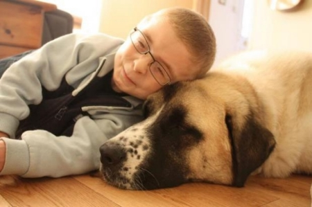 Inspiring Story about a Boy and his Dog    January 14, 2015