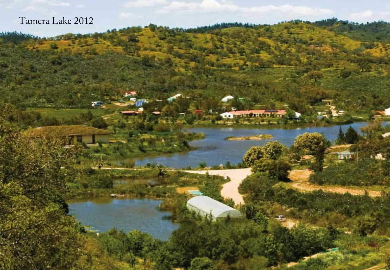 Tamera, Portugal, 2012 - After water holding landscape design