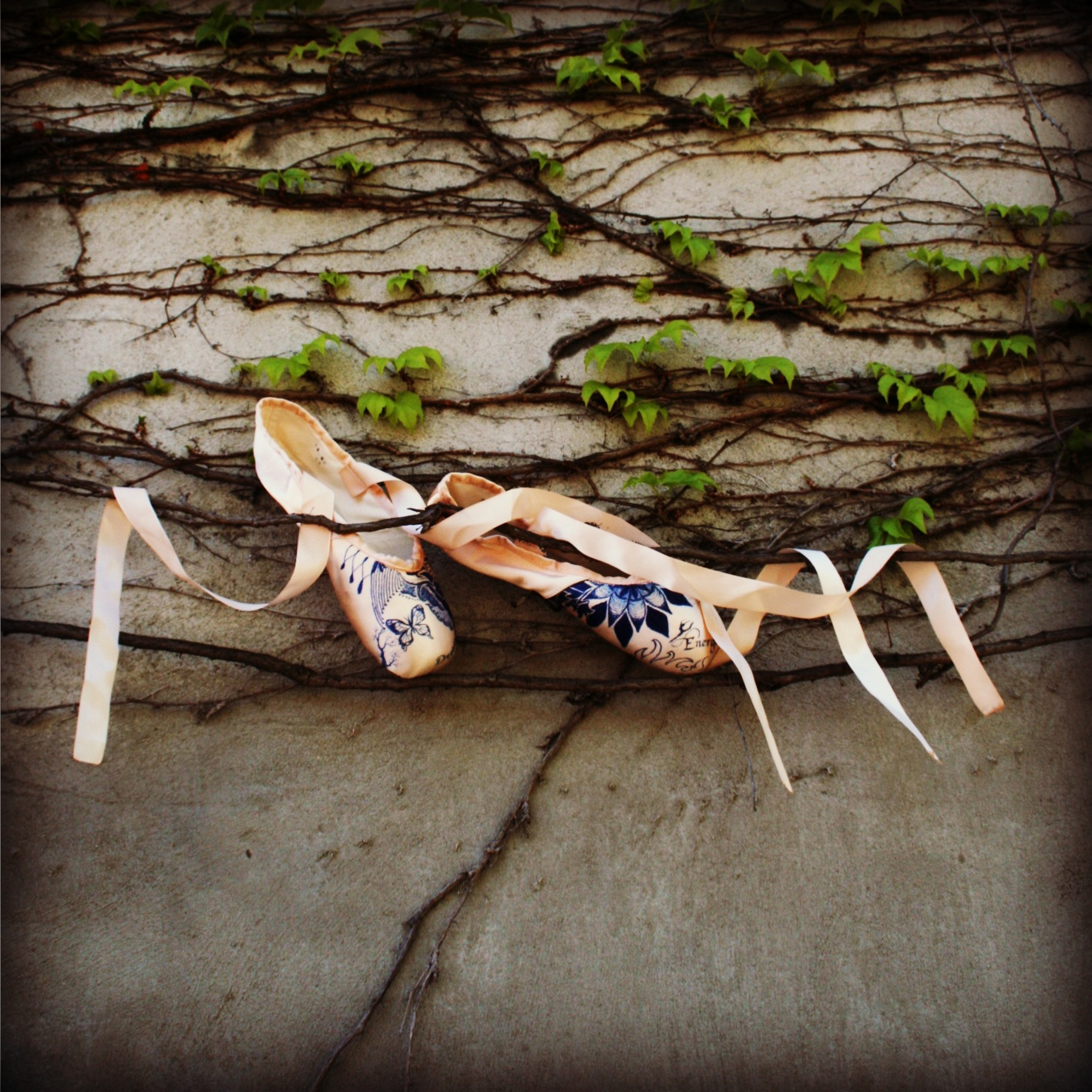 Pointe shoes in leaves3