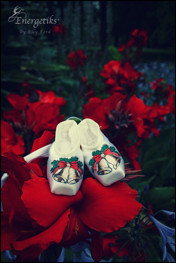 Our 'Jingle Bell' pointe shoes decided to pick a more Christmas-y blossom!