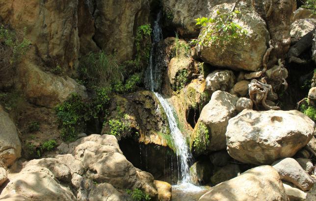 Solstice_Canyon_Trail_IMG_2905.jpg