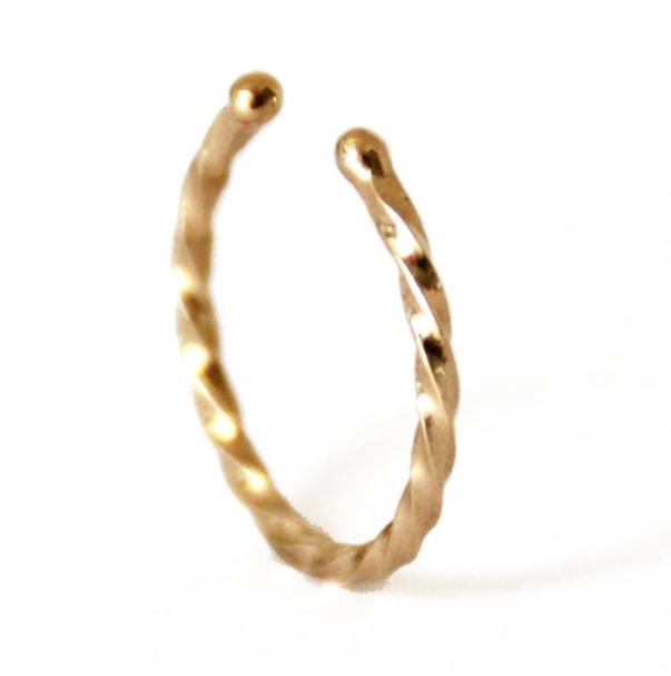 Twist Ring 1.jpg