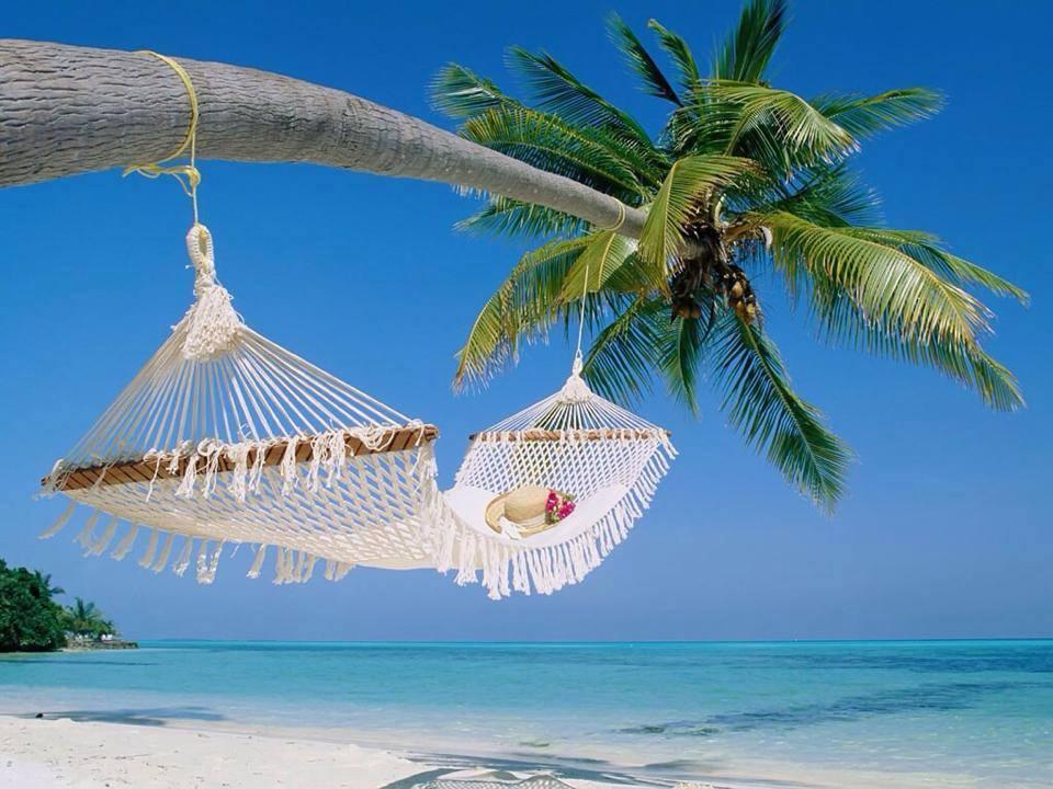 Viola-Christina-fave-dream-spot-beach-Hammock-Plam-Tree-Ocean-Contest-Entrant-May-2014.jpg