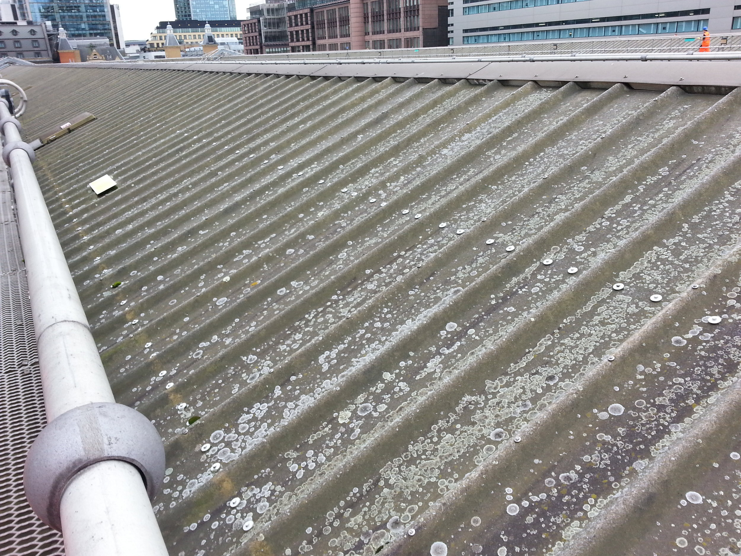 Liverpool Street Station - Roof Survey 164.jpg