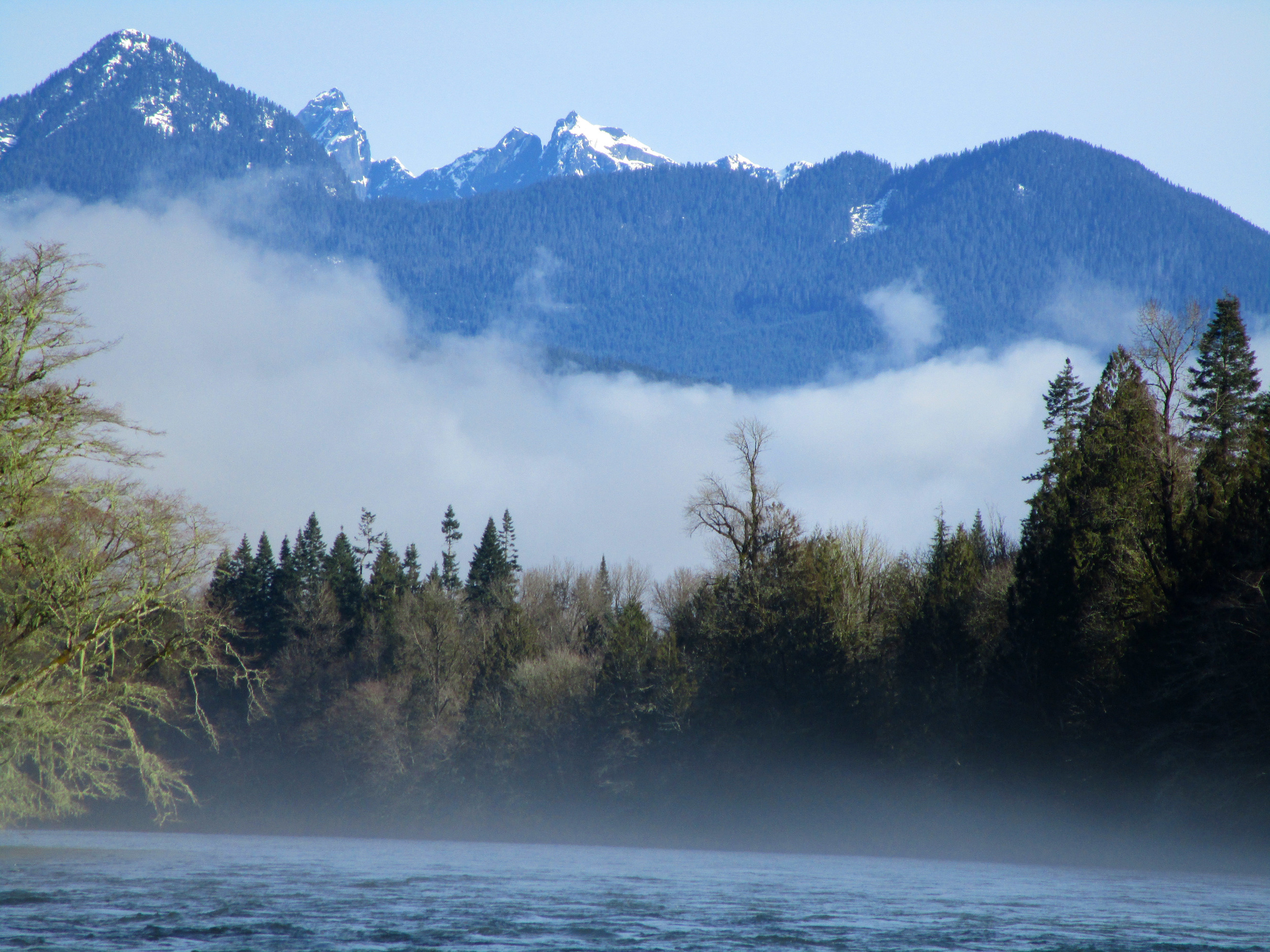 Photo of Skagit River during a Triad River Tours Eagle Watching trip courtesy of Firetalker PR, Seattle