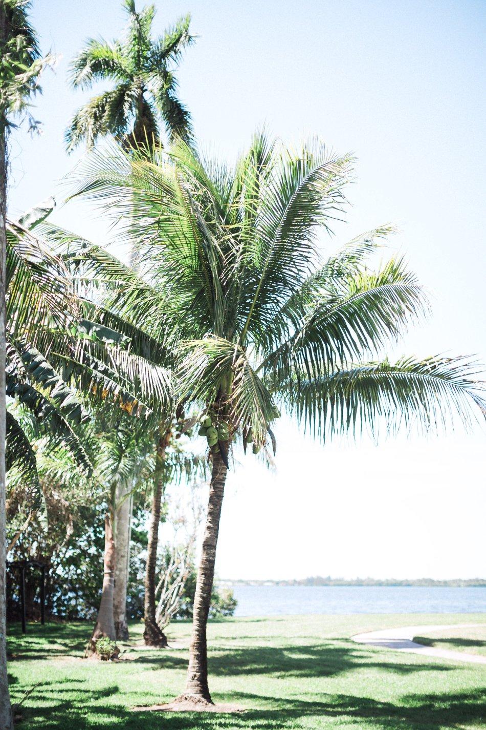 south-florida-destination-wedding-photographer_0661.jpg
