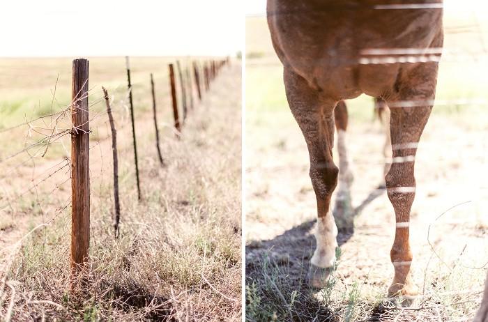 marfa-texas-film-photography-cody-hunter-photography-114.jpg