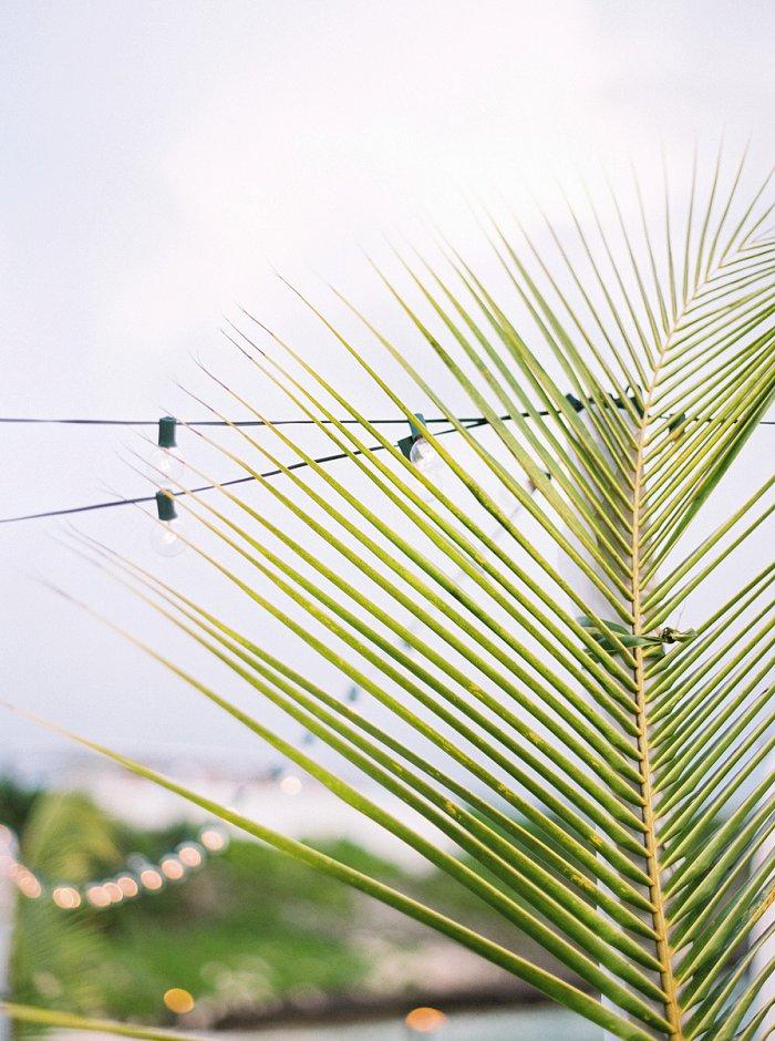 eleuthera-island-bahamas-destination-film-wedding-photographer-2461_07.jpg