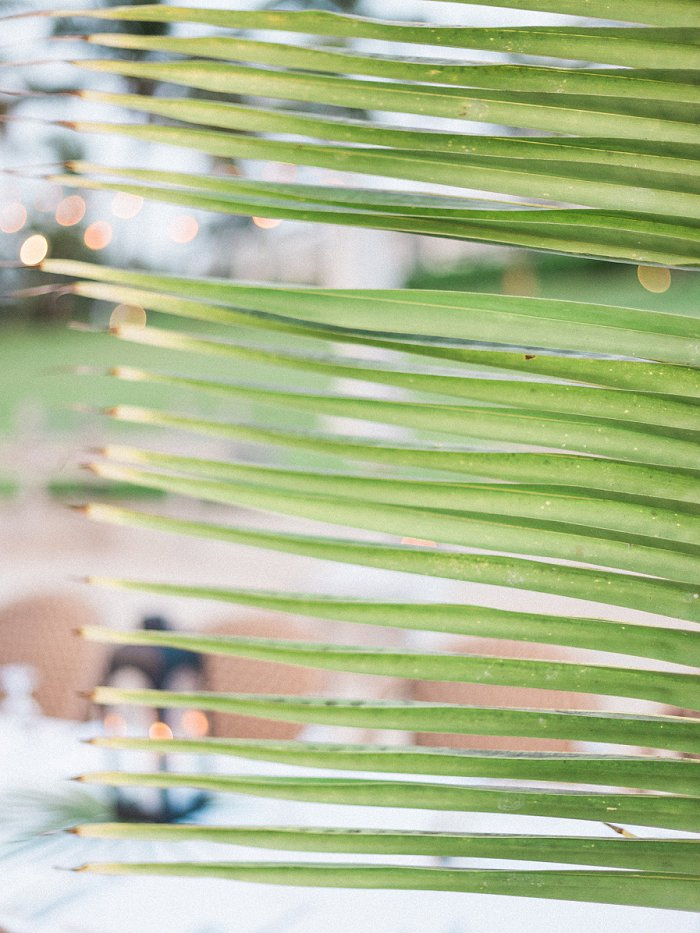 eleuthera-island-bahamas-destination-film-wedding-photographer-IMG_0019.jpg