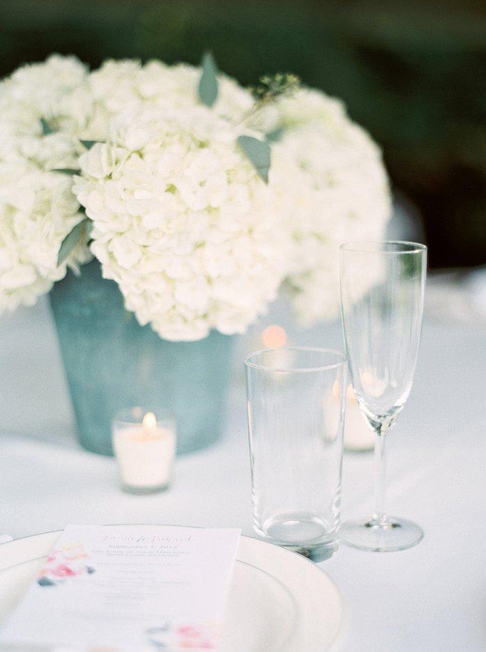 st-louis-destination-film-wedding-photographer-5964_12.jpg