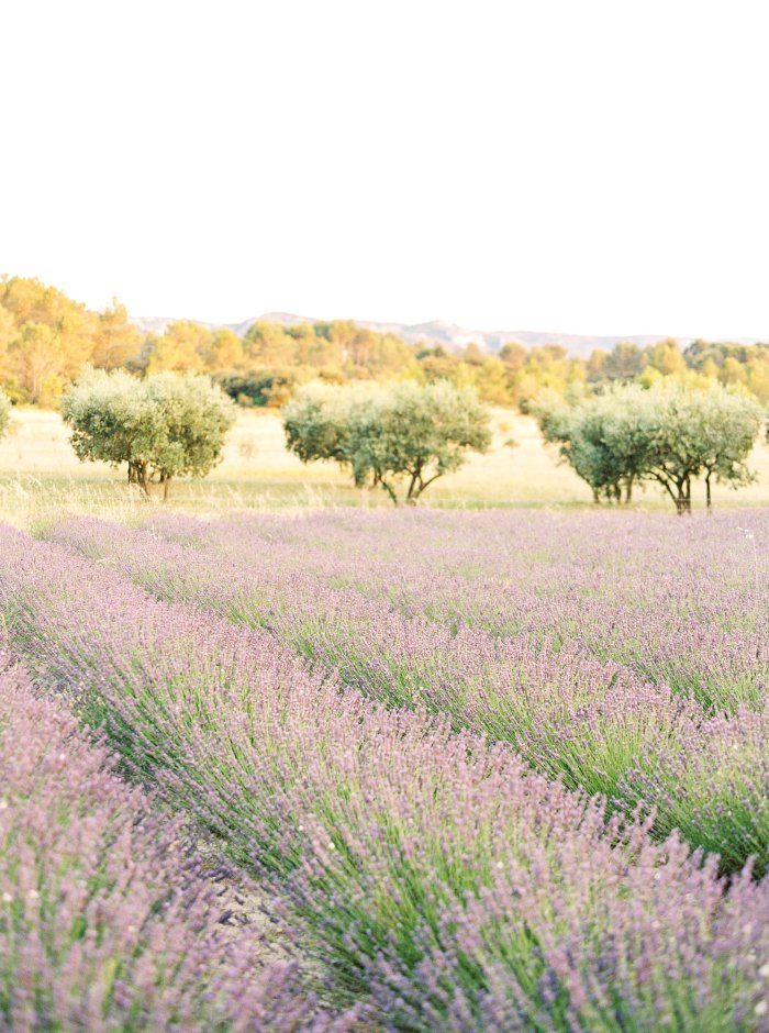 provence-france-destination-film-wedding-photographer-4547_03.jpg