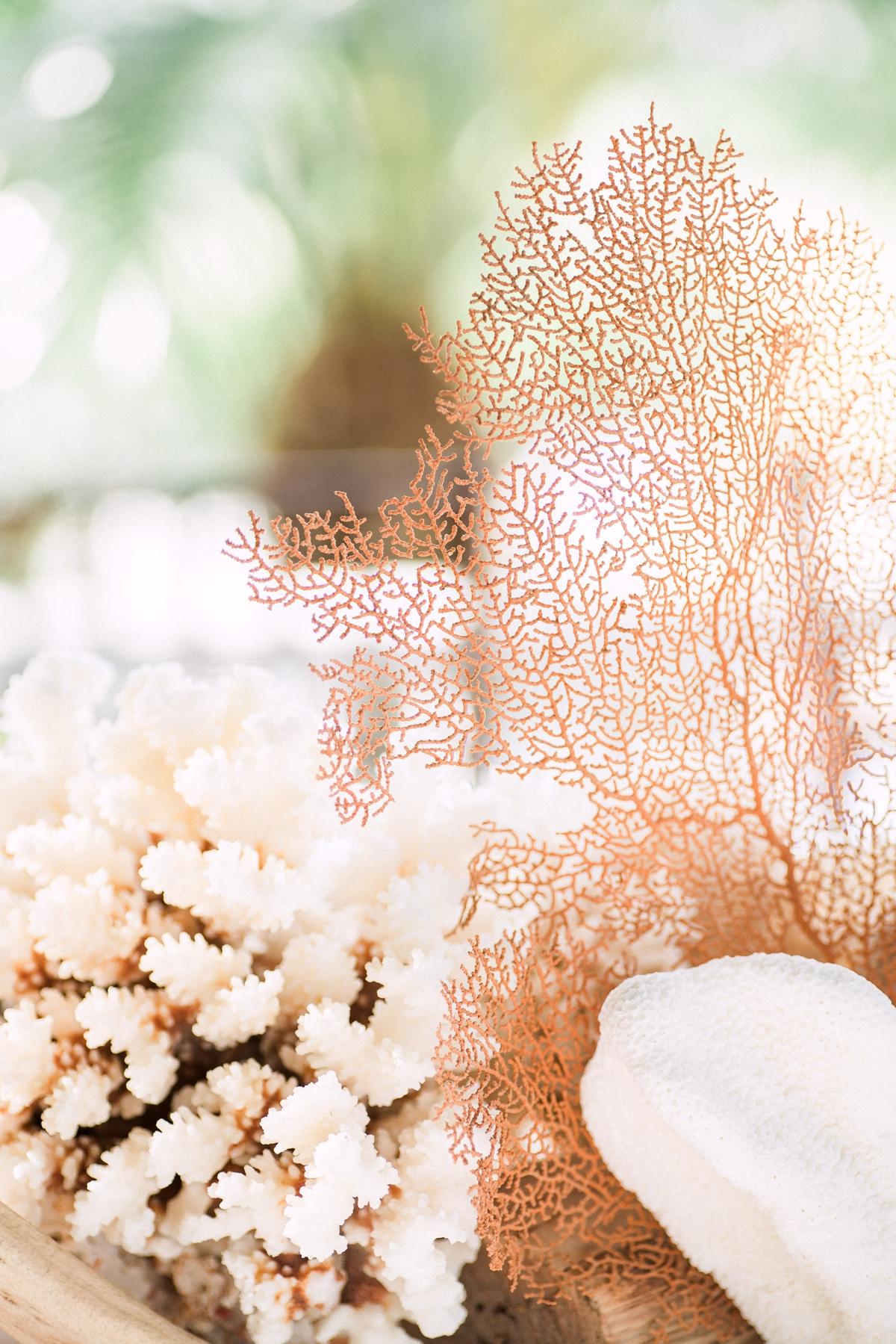 Gasparilla Inn-Boca Grande Wedding Photographer._0350.jpg