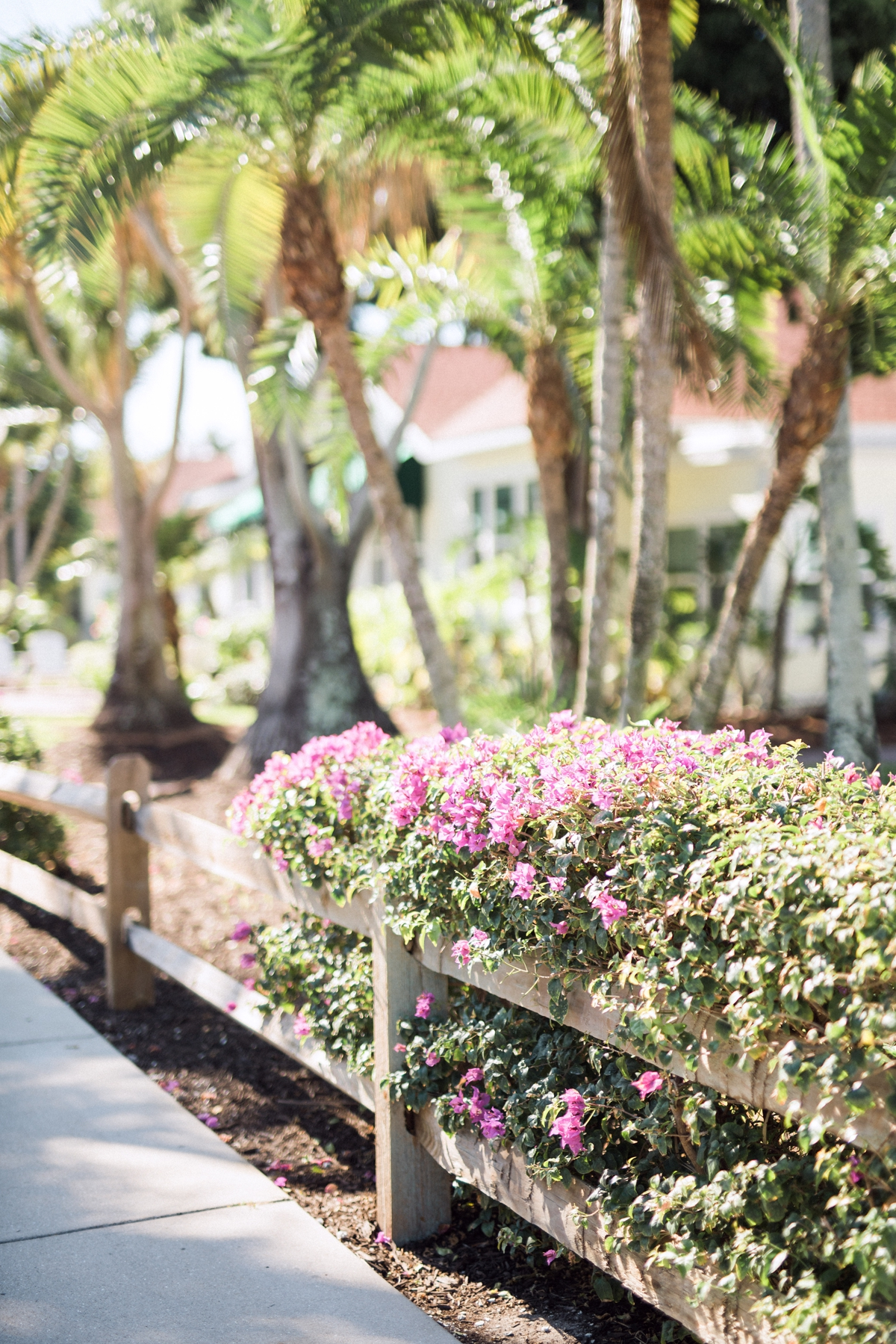 Boca Grande, Gasparilla Inn Wedding. Destination Wedding Photographer_0561.jpg
