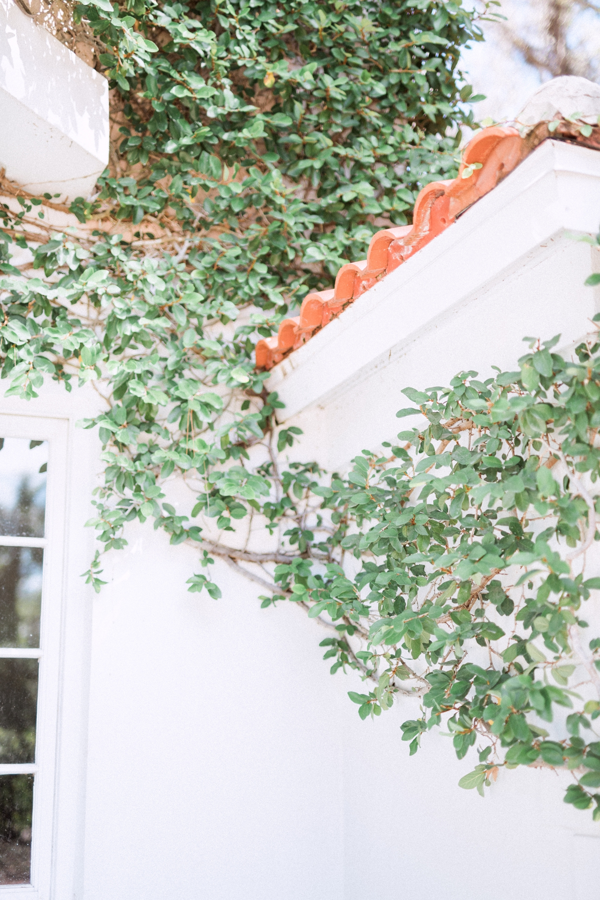 Sarasota Wedding Photographer_0013.jpg