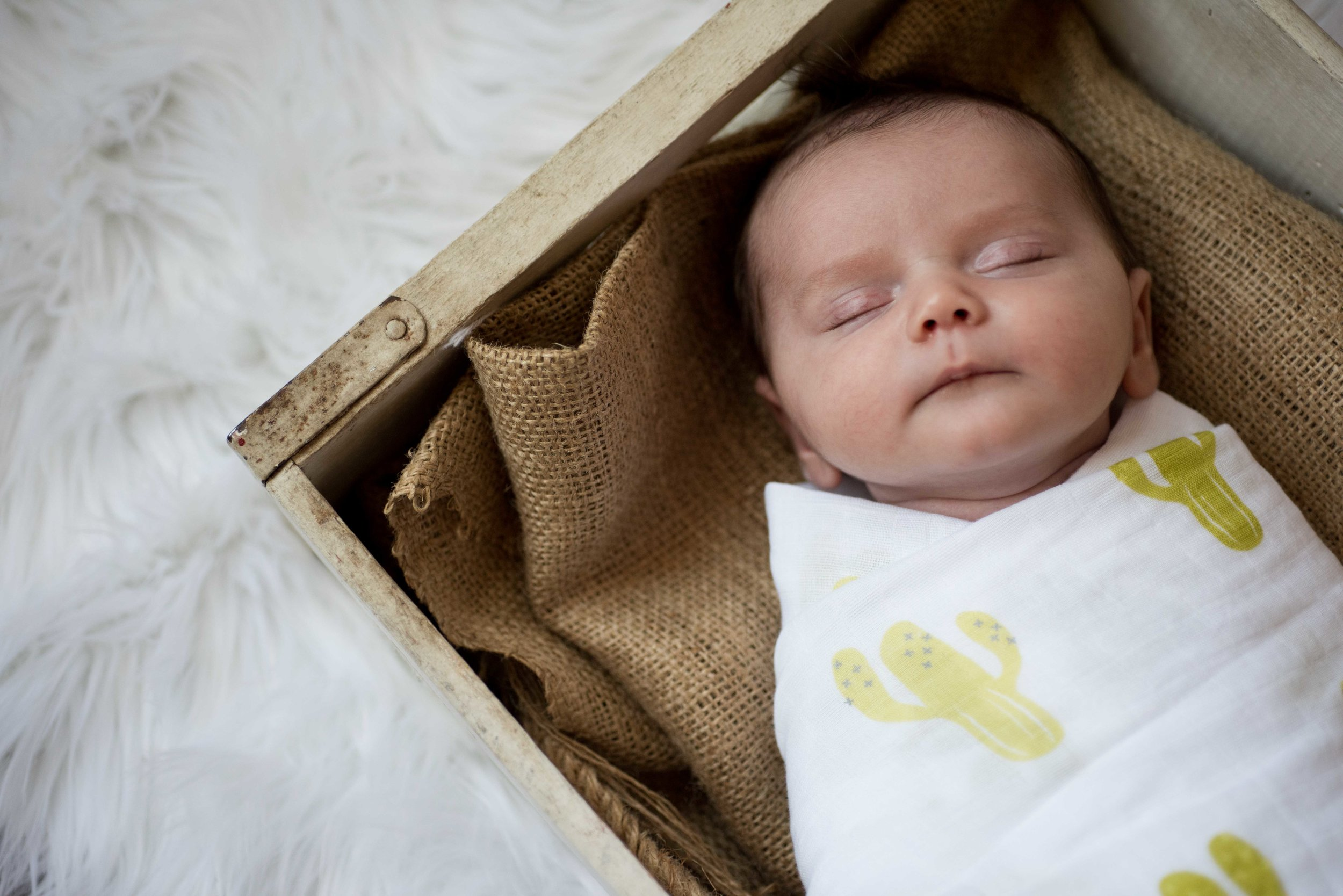 Newborn Photographer Phoenix, Arizona