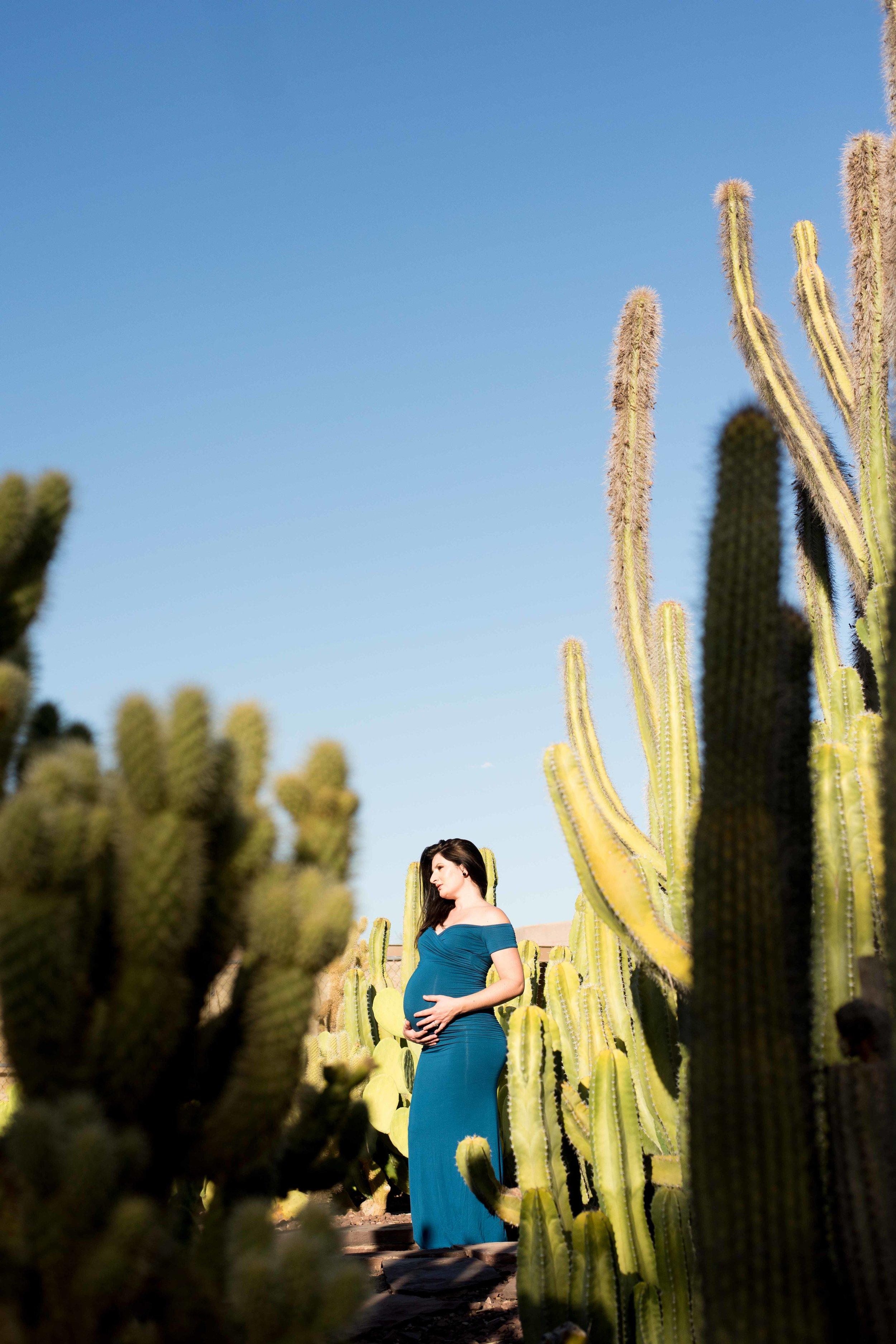 Scottsdale Arizona Maternity Photographer