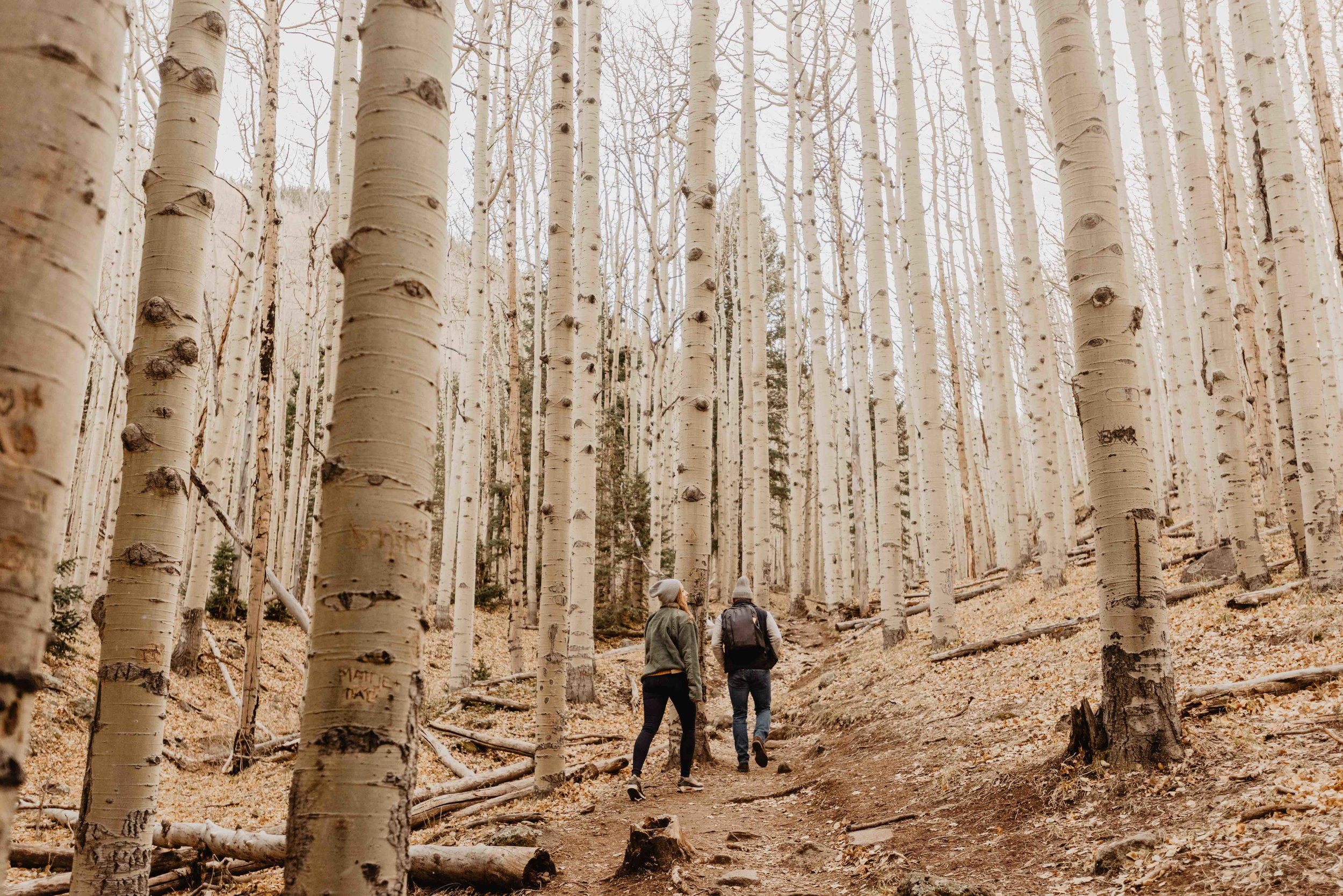 adventurous engagement session in flagstaff arizona
