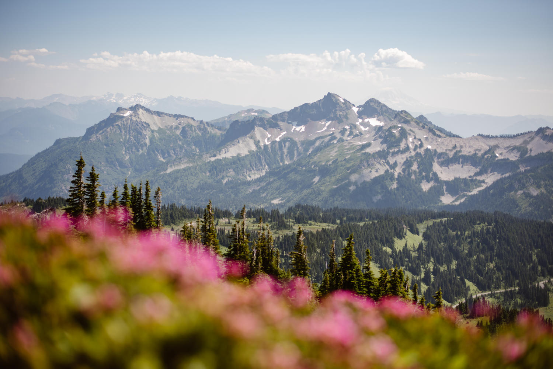 best-trails-at-mount-rainier