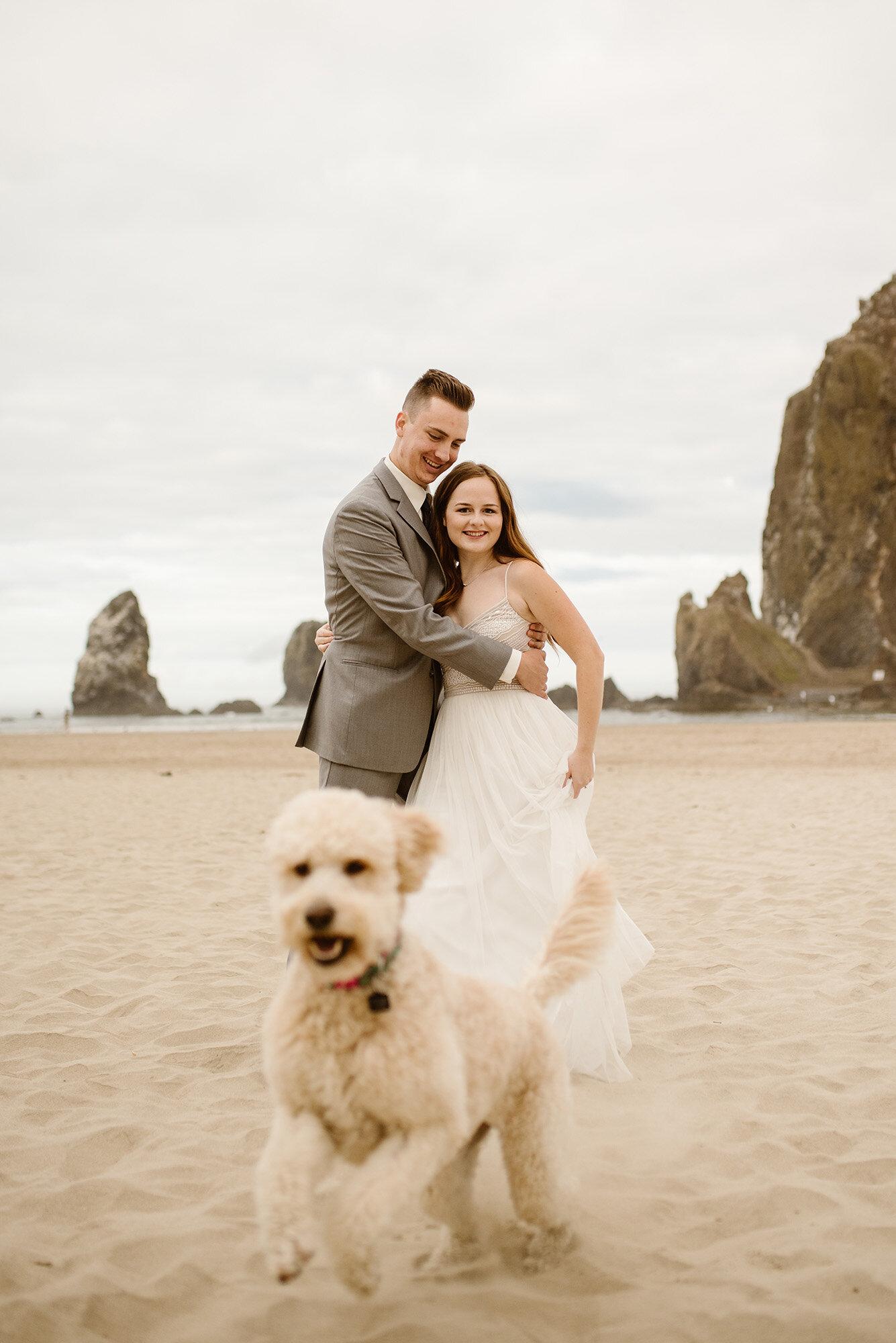 pet-friendly-elopement