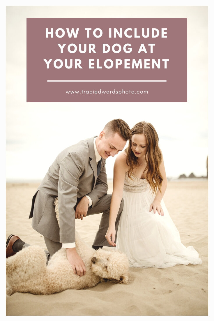 How-to-include-your-dog-at-your-elopement