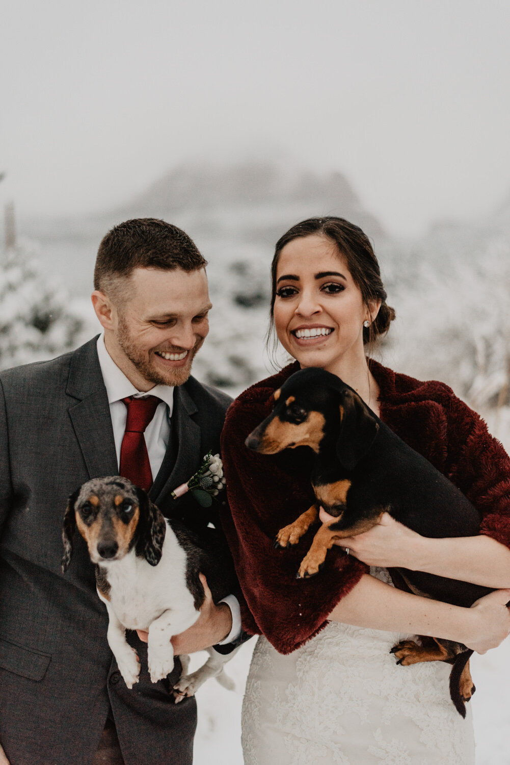 winter-elopement-with-dogs
