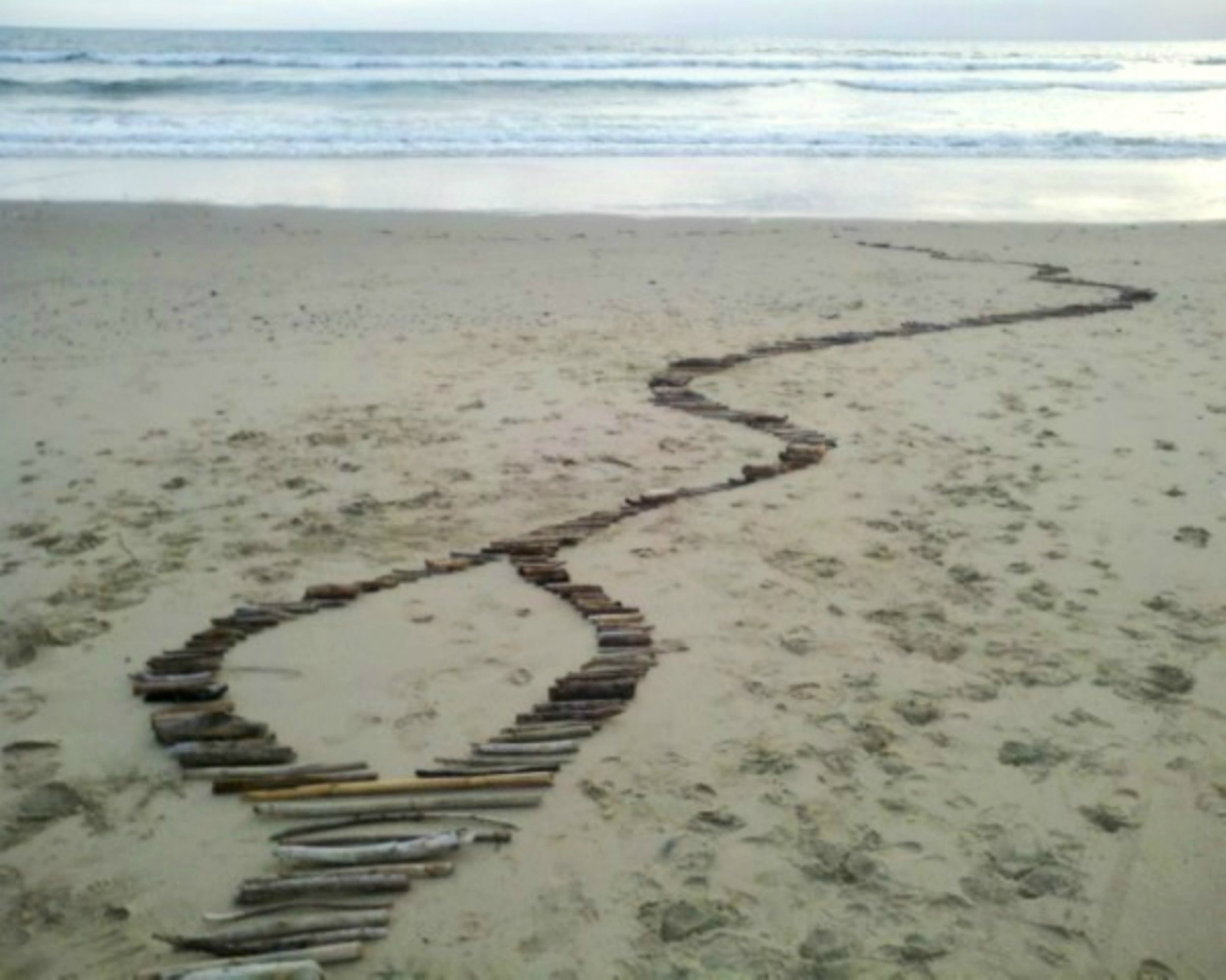 All Roads Lead to Our Ocean 5.jpg