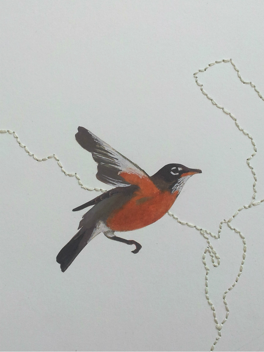 "The American Robin, state bird of Wisconsin.  The robin is a promise of new beginnings, the inception of spring and growth, and of the ""return of warmth"".  Native American Plains' tribes regard its bright yellow beak as a symbol of the sun rays lighting the earth with hope, and attribute their beak color with being mindful of the spoken word. The robin was a sign to only present the highe st truth when speaking.   The Iroquois and Shoshone tribe lore indicated that the white ring around the red robin's eye was symbolic of prophetic vision, clarity, and great wisdom. The robin would be called upon during ceremonies when clear understanding was needed, and quality judgments needed to be made. Omaha tribes believed the sun rose and set on the wings of the robin."