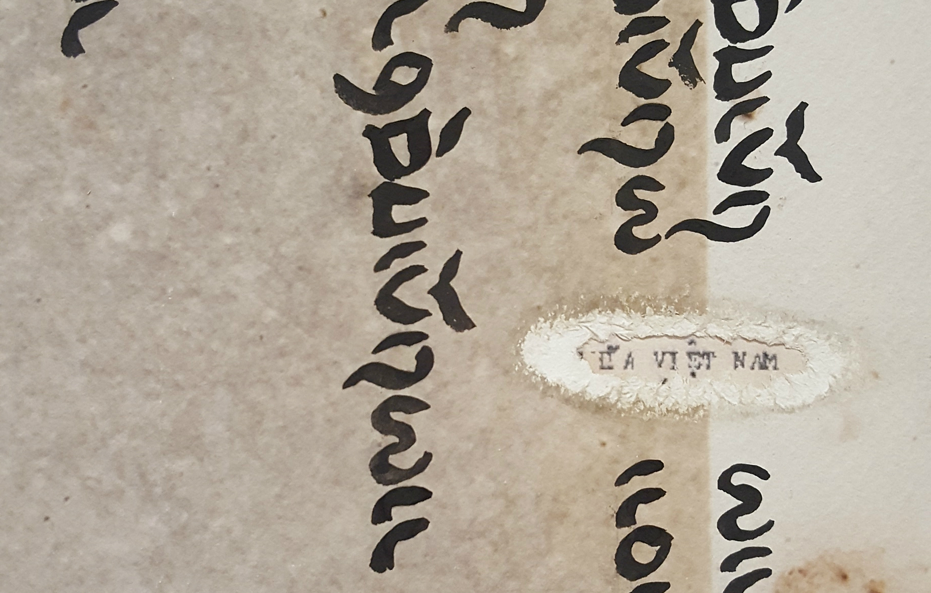 """Detail of """"VIỆT NAM """"  as seen on Bác  Phơưl's release papers from the re-education camp"""