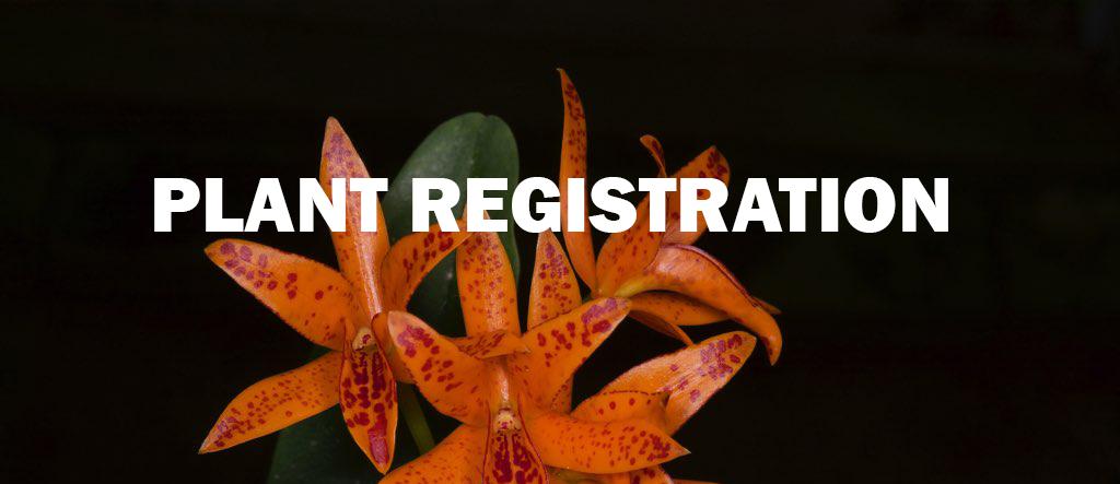 Plant-Registration-Final.jpg