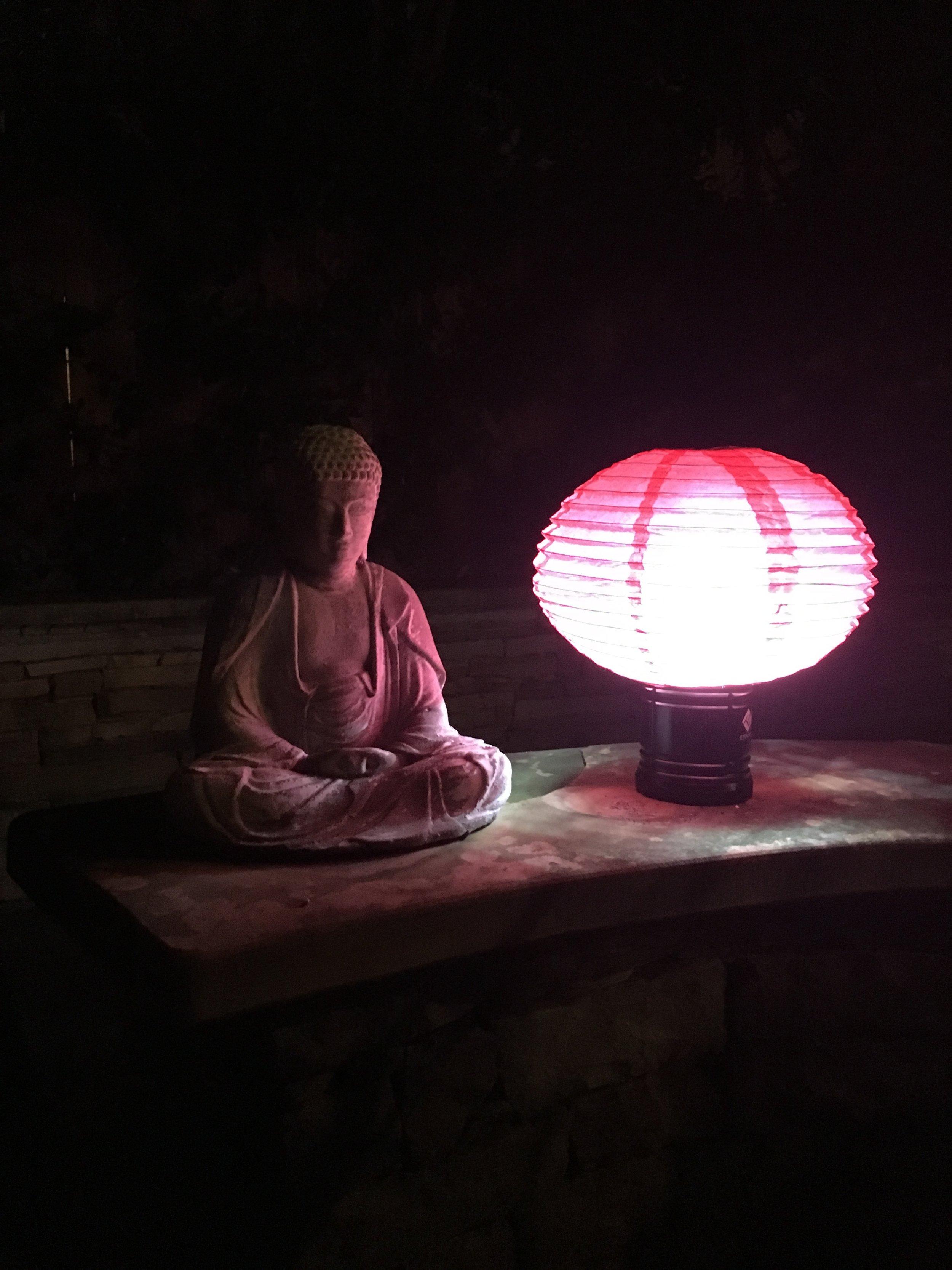Buddha at night.