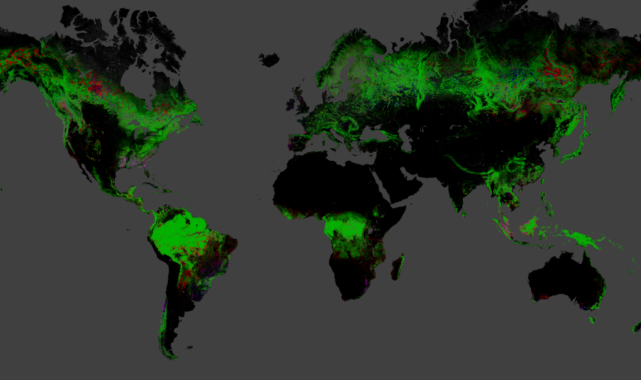 GLOBAL FOREST CHANGE (2000-2012)